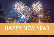 New Year Wishes, Sms, Status, Quotes, Captions